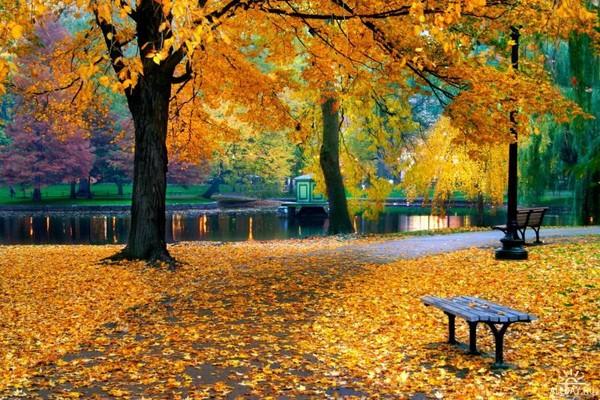 Осенние  пейзажи - Страница 2 I-9410