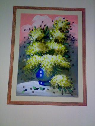 I quadri di casa Lula Mimosa10