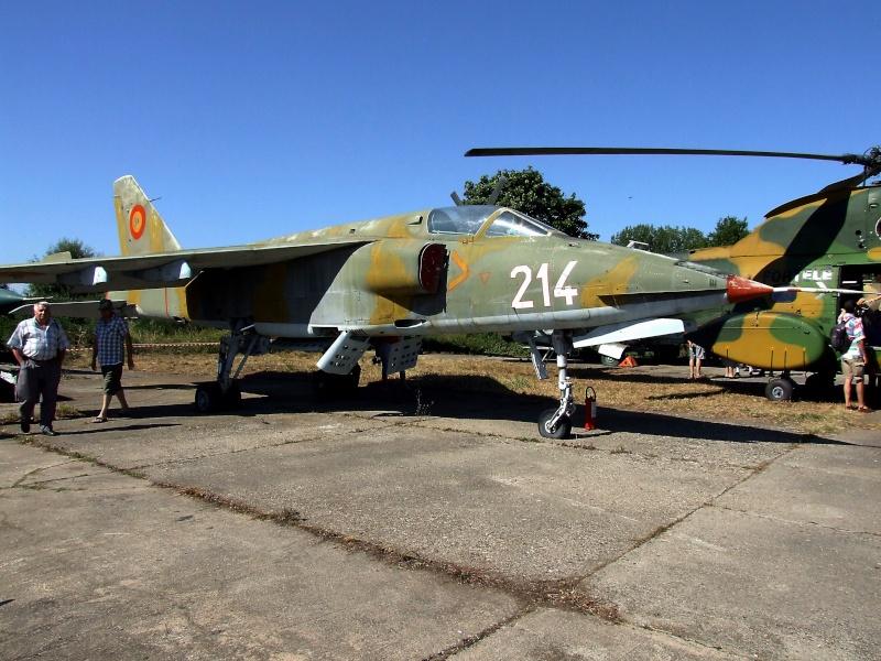 Meeting aviatic - 55 DE ANI DE AVIAŢIE MILITARĂ PE TIMIŞOARA Dscf9114