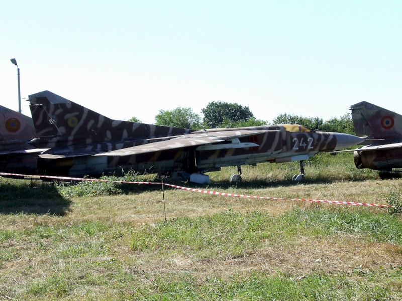 Meeting aviatic - 55 DE ANI DE AVIAŢIE MILITARĂ PE TIMIŞOARA Dscf9115