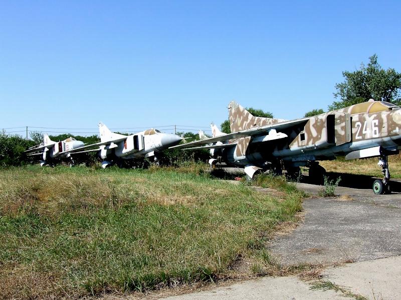 Meeting aviatic - 55 DE ANI DE AVIAŢIE MILITARĂ PE TIMIŞOARA Dscf9119