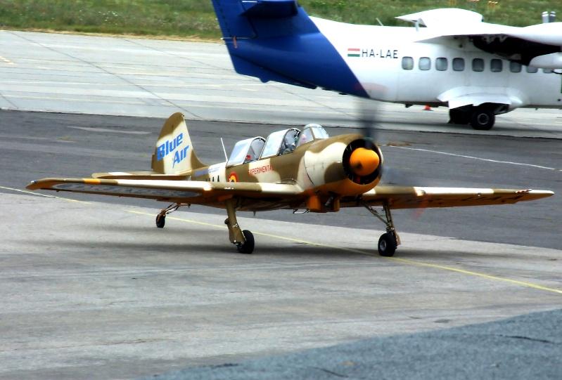 Yak-52TW Dscf9413