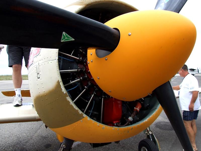 Yak-52TW Dscf9418