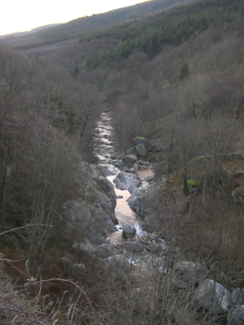 Truites d'Ardèche Imgp3411