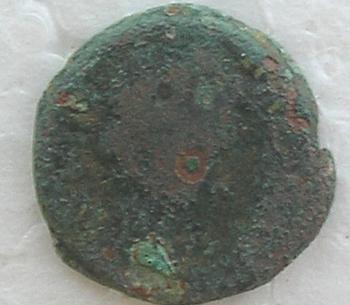 Semis de Ilici (por Augusto) 13411