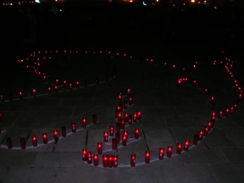 FOTOS - Colaboracion para la realizacion de la Paloma de la Paz del 11-M Dscn0818
