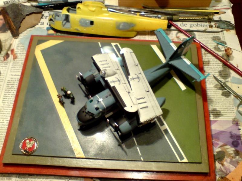 Modelismo Aeronaval - Armada Argentina - Página 4 Dsc00824
