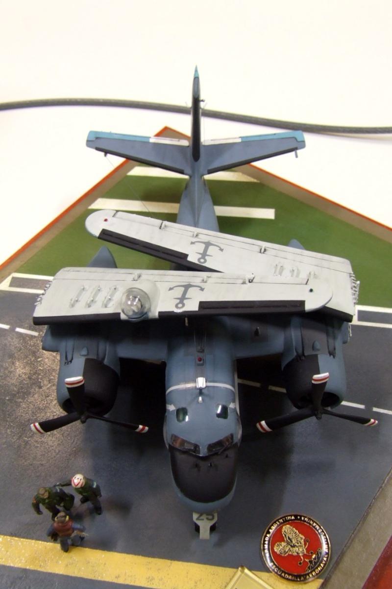 Modelismo Aeronaval - Armada Argentina - Página 5 Dscf0012