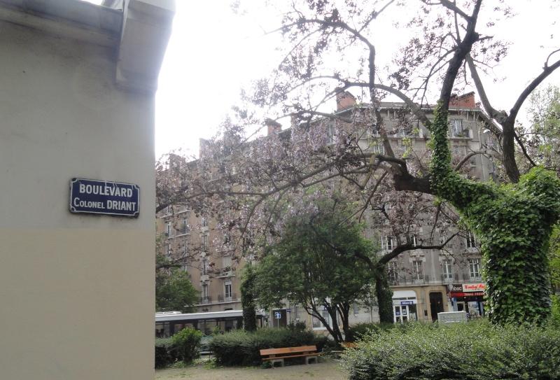 Rues et Places de nos Villes en Hommage : - Page 2 Dsc03610
