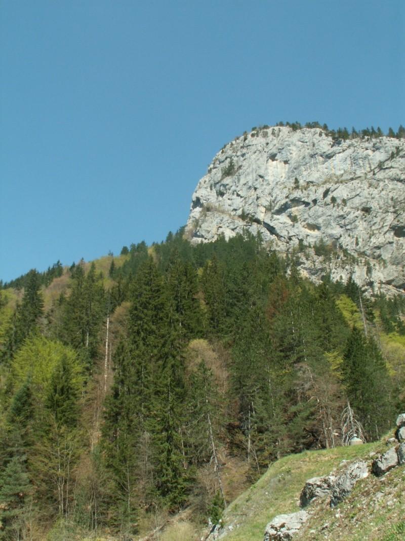 Monument des GLIERES Pict0523