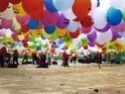 Especial Falles 2008 Globot10