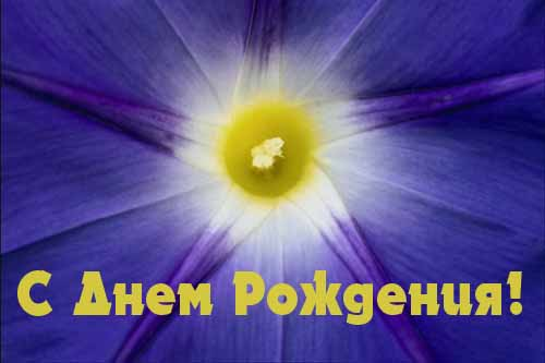 михаил - Поздравляем Наших Форумчан! 11110