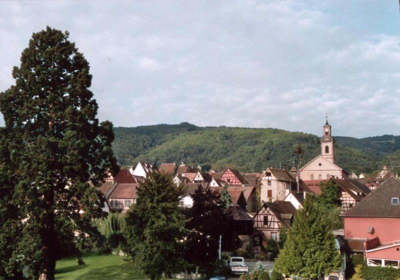 Alsace Colmar Rikewihr Rique10