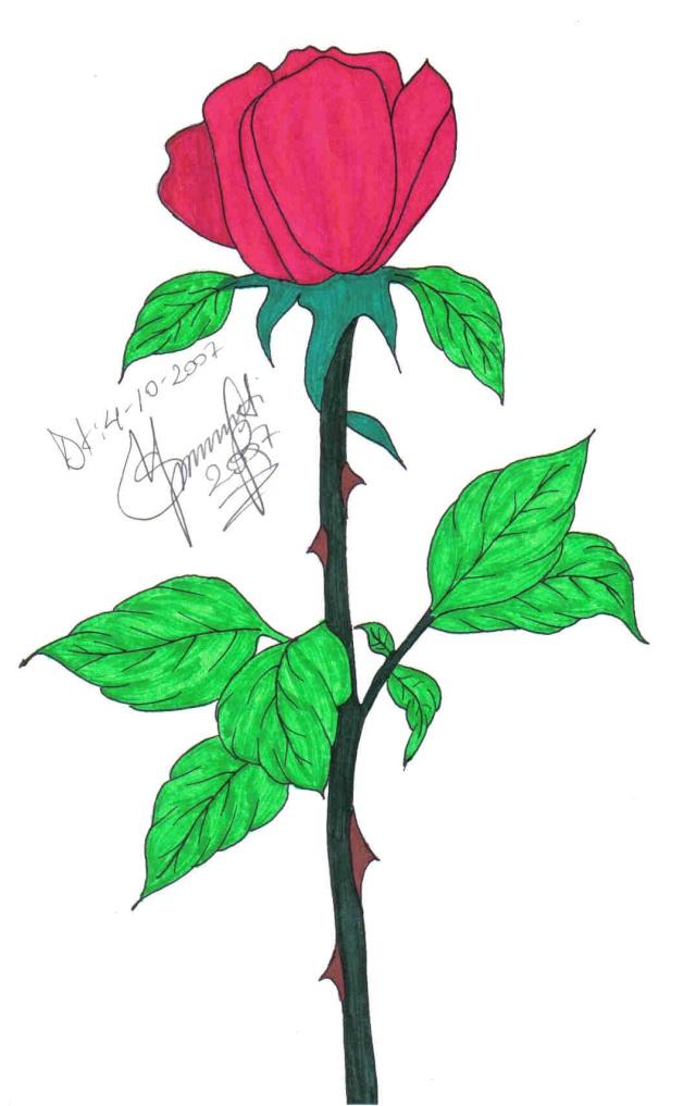 Piktura të vizatuara nga unë... - Faqe 2 Trenda11