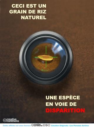 Affiches De Sensibilisation Affich17