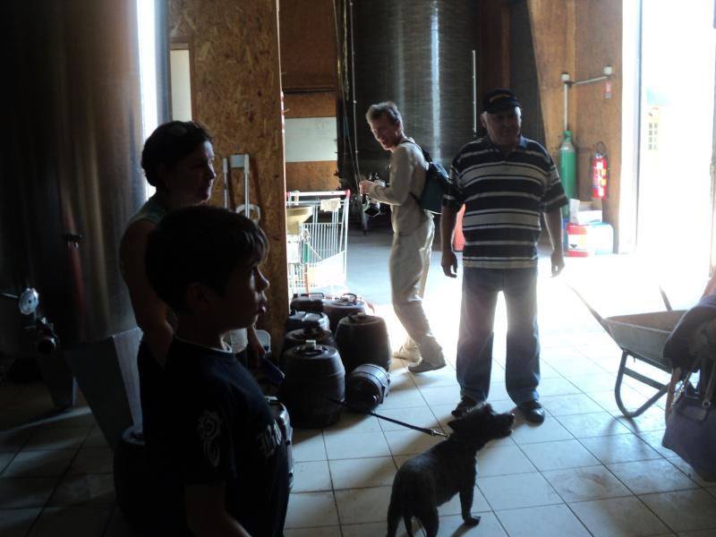 Réunion pentecôte 2012: LES PHOTOS!!! - Page 5 Dsc03122
