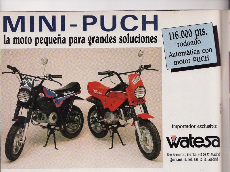 Mini-Puch - ¿Magnum X? Motoci10
