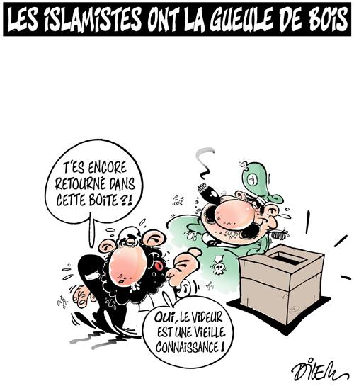 Actualités Algeriennes - Page 11 64_dil10