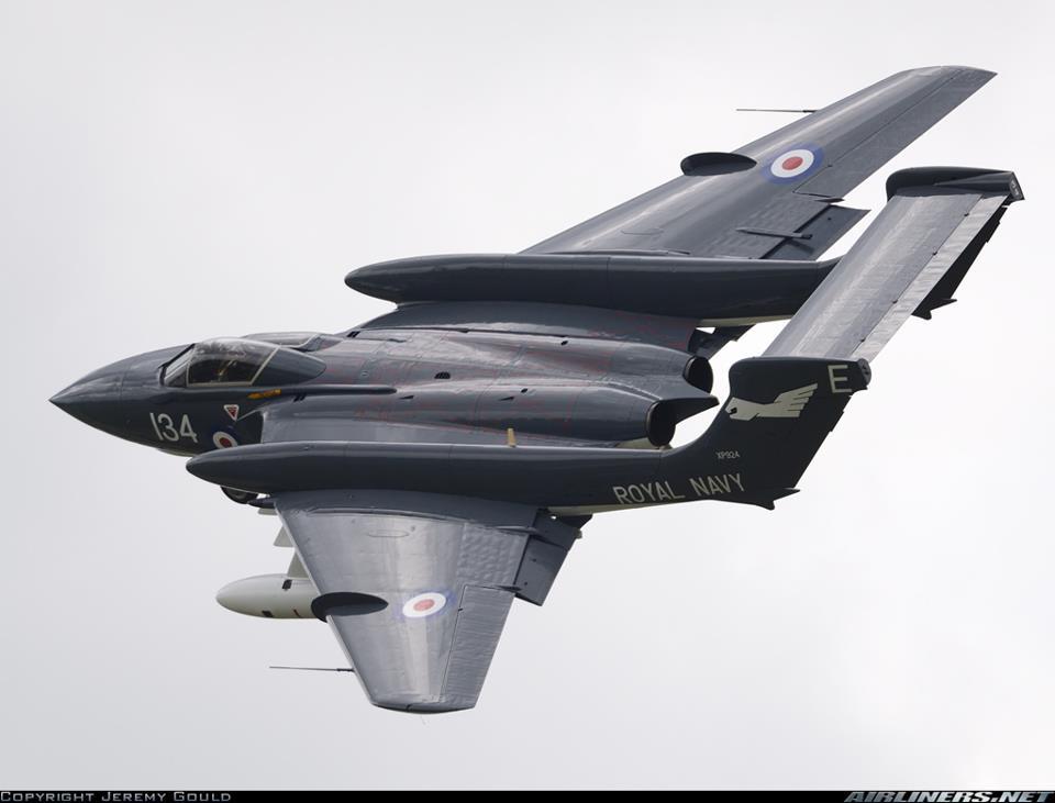 Armée Britannique/British Armed Forces - Page 40 Sea_vi10