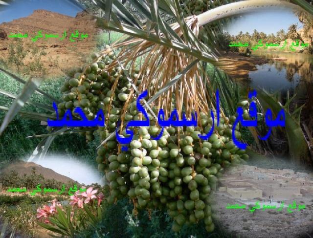موقع ارسموكي محمد يرحب بكم