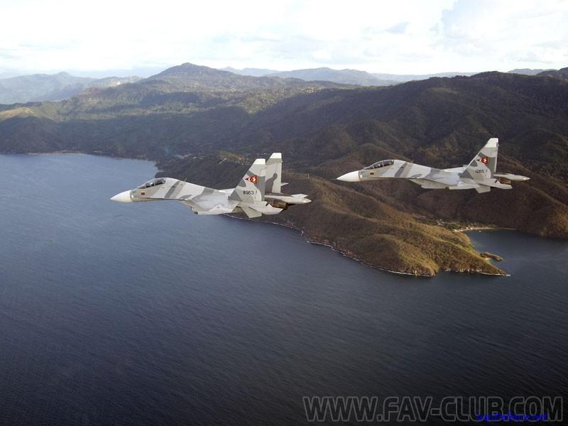 Armée Venezuelienne/National Bolivarian Armed Forces/ Fuerza Armada Nacional Bolivariana En_vue10