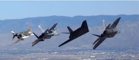 F-22 Raptor Hollom10