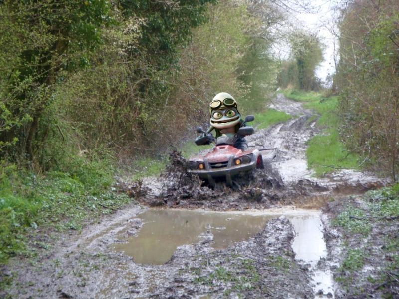 j'ai prêté mon quad a Crazy Frog Frog_t10