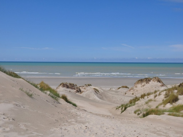 Flann à la mer en Baie de Somme avec son copain Shan (vidéo bas page 1) Dsc_0114