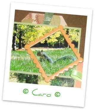 Galerie de Caro ~ MAJ 8/05 ~ p2 Cimg8011