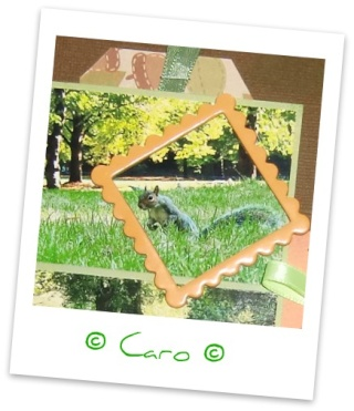 Galerie de Caro ~ MAJ 8/05 ~ p2 Cimg8014