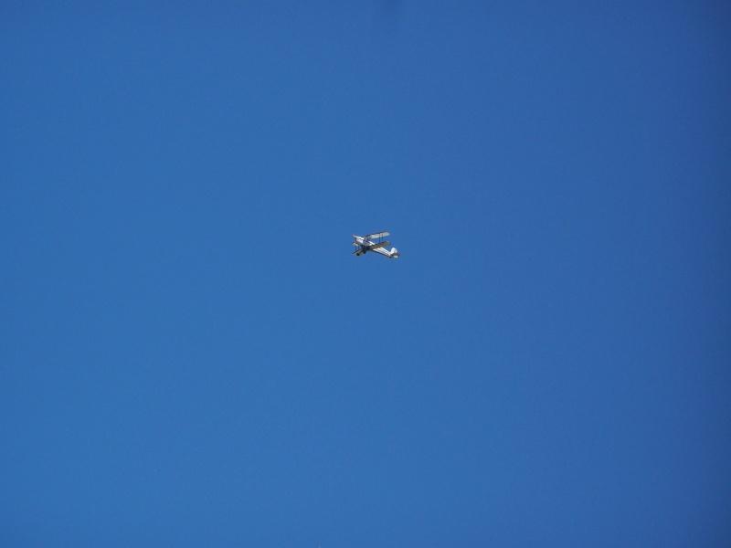 Aviation Champêtre 100_2114