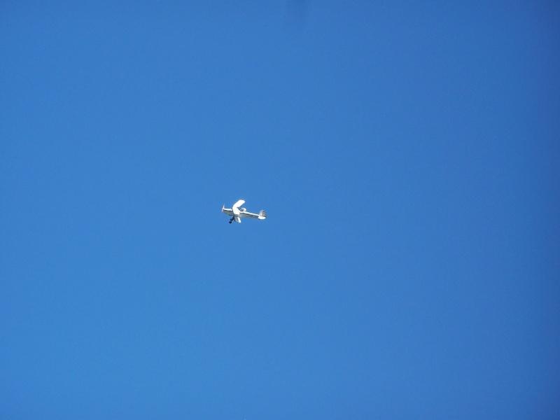 Aviation Champêtre 100_2115