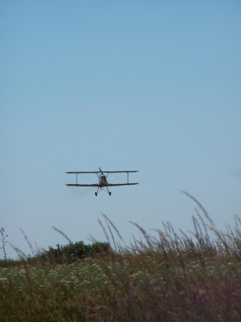 Aviation Champêtre 100_2116