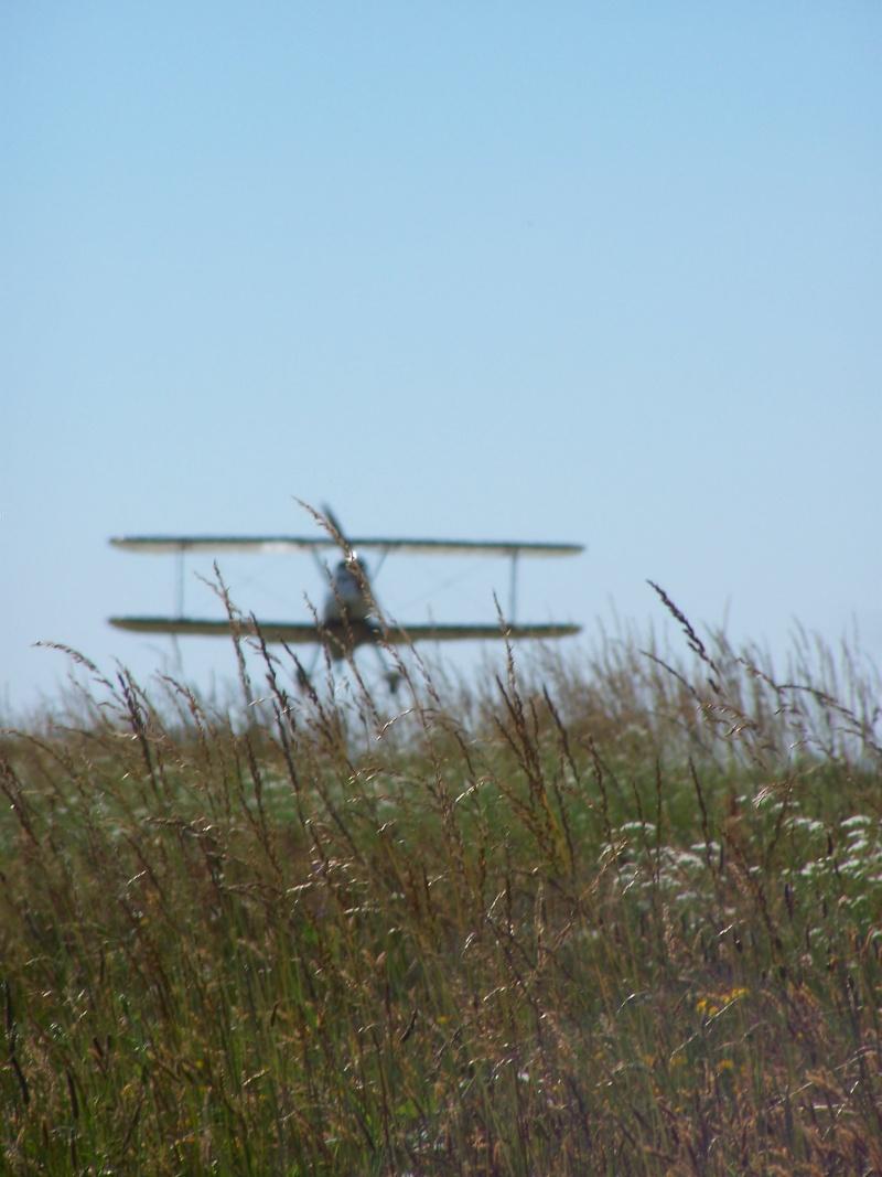 Aviation Champêtre 100_2210
