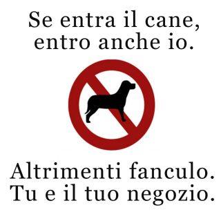 Benvenuto al cane e al gatto Cane13