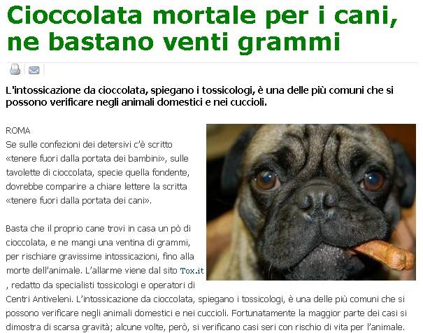 Pericolo per i cani..... Cani11