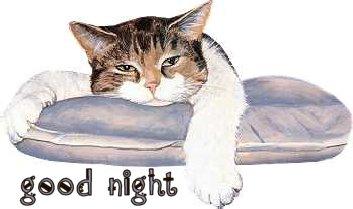 Buona notte a tutti - Pagina 2 Notte10