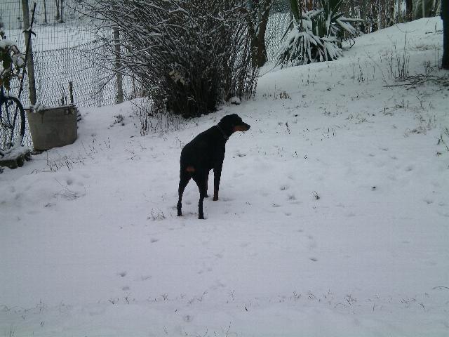 Neve della Befana Xena10