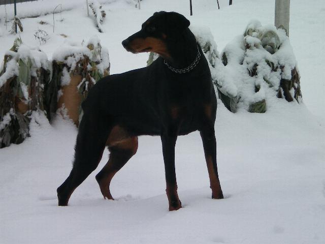 Neve della Befana Xena_011
