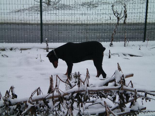 Neve della Befana Xena_012