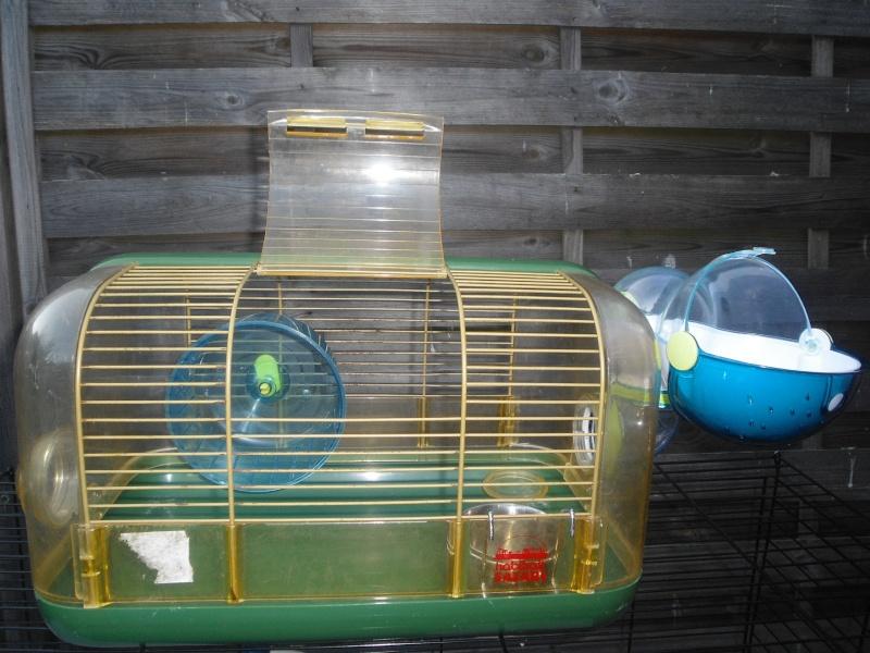 Plusieurs cages à vendre (91 et 92) L_p_h_10