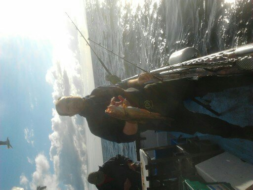 rinnashark 2012 boats 13420310