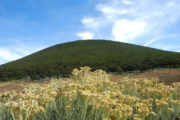 ...foto panorama alam.... Hendri14