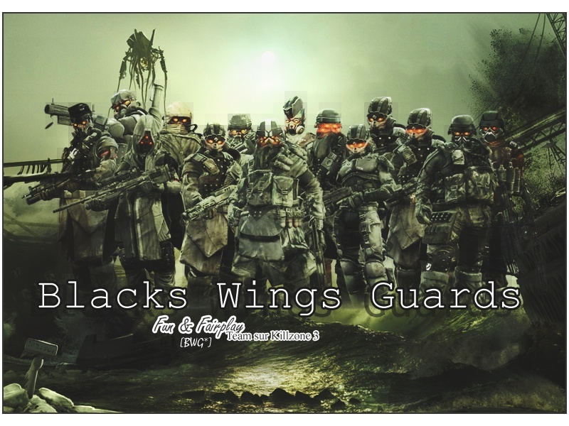 BLACKS WINGS GUARDS