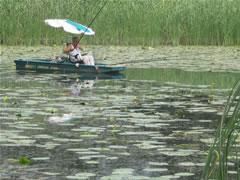 """crkva - """"Dobra mesta"""" za pecanje Bara2610"""