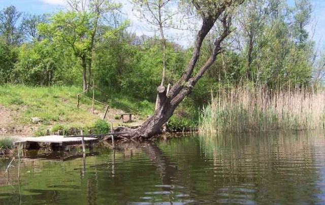 """crkva - """"Dobra mesta"""" za pecanje Bara2611"""