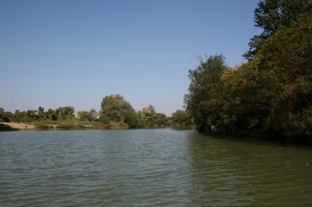 "crkva - ""Dobra mesta"" za pecanje Tamisp10"