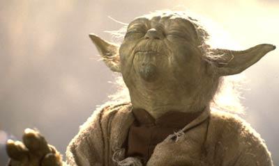 encadrement équipe 2 Yoda1210