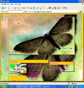 Butterfly Fairy Bt110