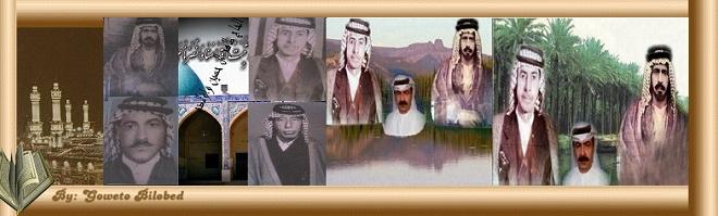 موقع الشاعر مشير السعيدي